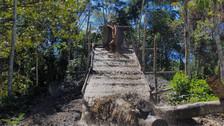 Reportaje | La minería ilegal en Perú devasta los bosques en Amazonas