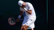 Hormigas voladoras invadieron las canchas de Wimbledon
