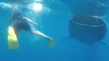 Sergio Ramos y Pilar Rubio vivieron experiencia extrema con tiburones