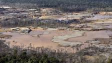 Perú: ¿Pueden reforestarse los suelos degradados por la minería ilegal?