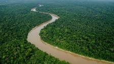 ¿Qué falta para que la Zona Reservada Yaguas se convierta en un parque nacional?