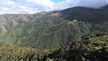Perú: agricultores le dicen no a la deforestación en nueva ACP San Juan de Sallique
