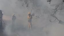 Donald Trump declaró el estado de desastre en California por los incendios