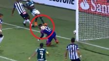 El blooper del arquero de Alianza Lima en el segundo gol de Palmeiras