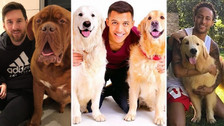 El mejor amigo del hombre: estas son las mascotas de los mejores jugadores del mundo