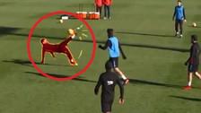 Mira el golazo de chalaca de Messi en los entrenamientos de Barcelona