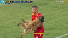 Video | Perro invadió el campo y casi muerde a Carlos Lobatón