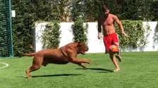 Lionel Messi se divierte con su perro mientras su hijo lo alienta