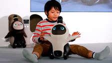 Lovot, el robot creado en Japón para generar afecto y ayudar a vencer la soledad