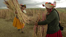 Berlinale: Documental peruano