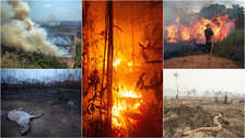 23 imágenes de la devastación que causan los incontrolables incendios en la Amazonía