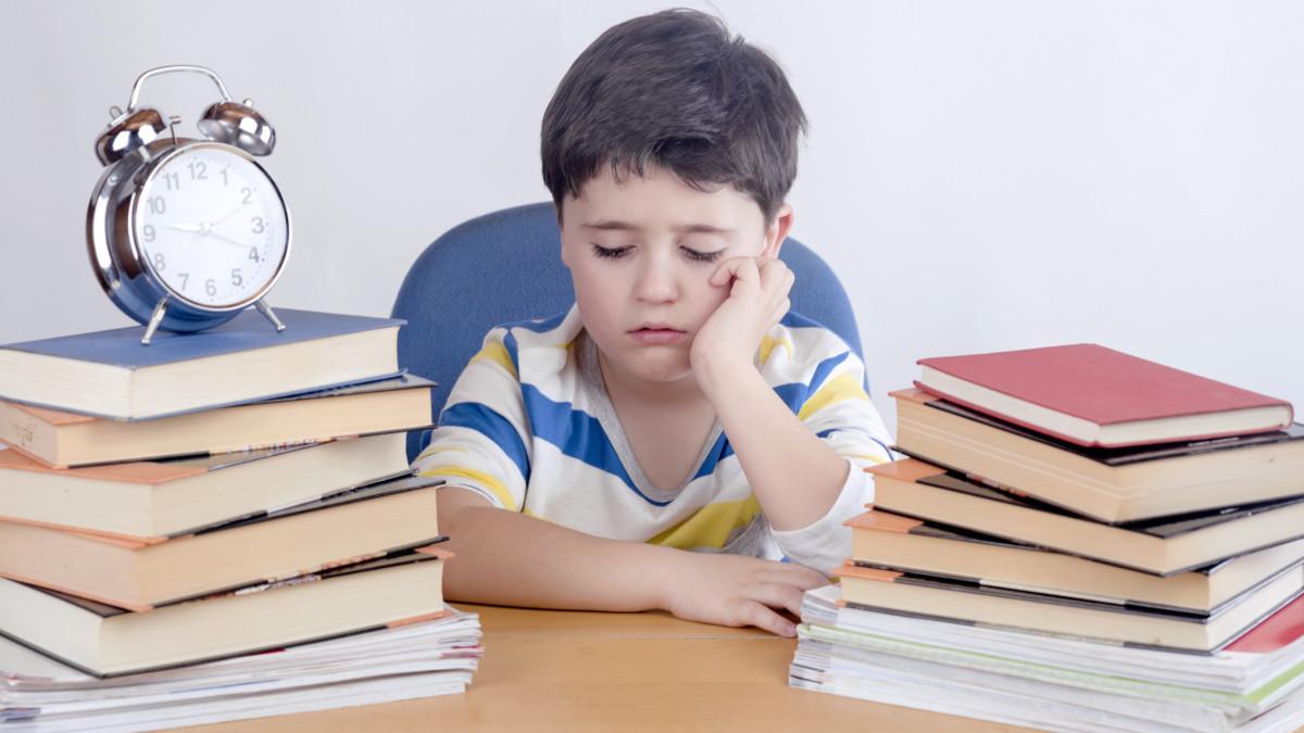 Aprendiendo junto a un niño con problemas de concentración